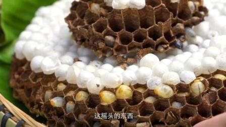 营养丰富炒蜂蛹