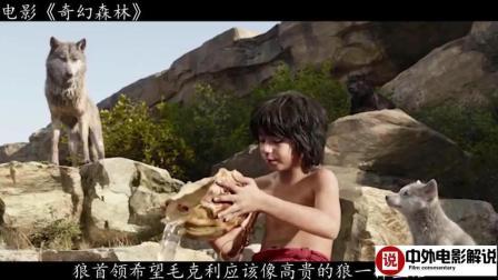 【电影解说】男孩在狼群中长大, 黑豹是他的朋友, 最后打败老虎成为森林之王