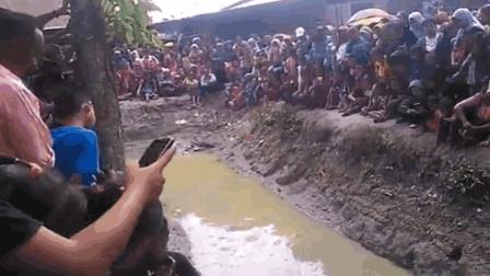 多年未干的水沟见底, 惊现一条罕见的超级大鱼, 吸引来全村人围观