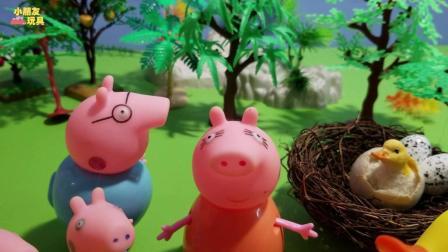 小猪佩奇玩具故事: 小猪佩奇家的小鸭子孵出来了