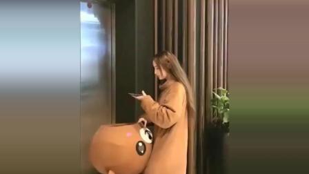 网红熊小姐姐等电梯时玩手机, 被人挪了地方都没发现