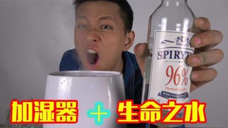把酒放入加湿器里面! 光靠呼吸就能醉吗?