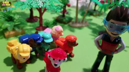 汪汪队玩具故事: 小砾捡到了一只乌龟玩偶, 正在寻找失主