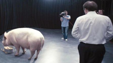 【浪哥】伤害一次猪, 就能救一条性命《黑镜》第一集