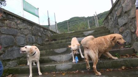 赵爹第一次带闺女外面玩水