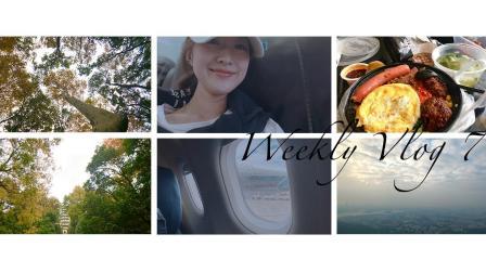 【桃毛小兽】Weekly Vlog 7   南京之行、爬山、首饰开箱、潮汕牛肉火锅