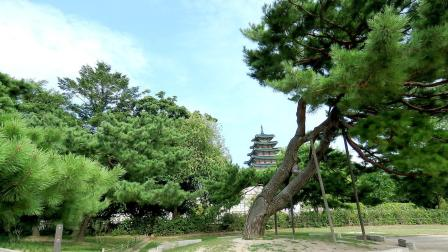 亚洲旅游 韩国故宫
