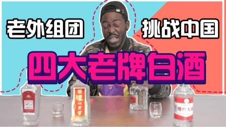 老外组团, 挑战中国四大老牌白酒, 表情一个比一个惊艳!