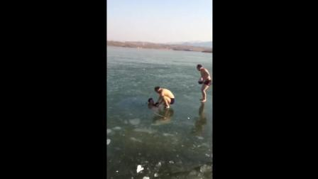 冬泳一下子游到了冰层下。怎么办?