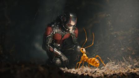 盘点漫威超级英雄中的穷人们, 蚁人榜上有名, 第一名是混得最惨的