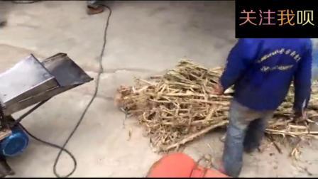 实拍国人研发的玉米秸秆揉丝机, 效果惊人