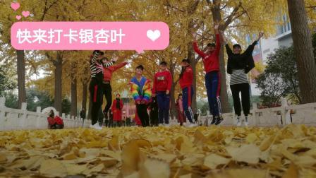 郑州市中心还有这么美的银杏叶! 趁着没落光, 周末快去打卡吧