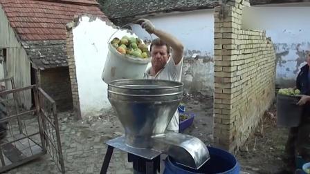 看看国外的榨汁机, 这效率太牛了!