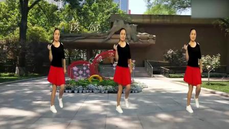 广场舞《林妹妹爱上了贾宝玉》经典简单好学!