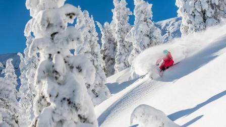 《50山峰加拿大站》大白山篇下