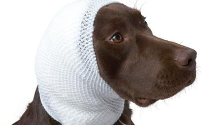 KRUUSE Woundcare-Tubular Stretch Bandage-丹麦古氏伤口护理系列-管状网状弹力绷带