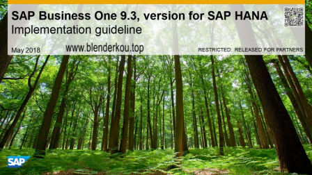 安装教程 SAP Business One 9.3 for HANA