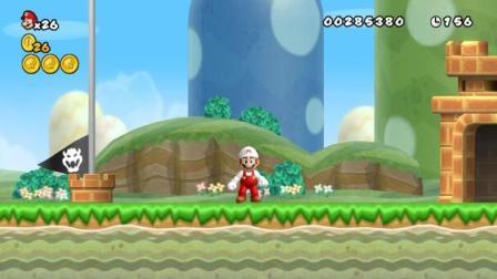 新超级马里奥兄弟Wii  5期 第1大陆 1-4关