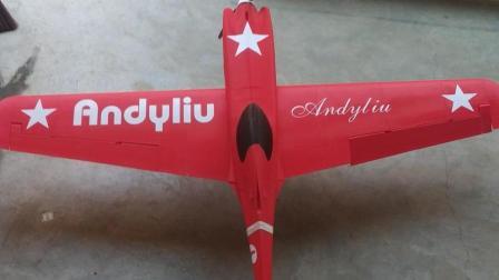 3D打印飞机小试飞, 最后降落请无视哈