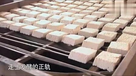 舌尖上的中国: 蒸桑拿的毛豆腐 !