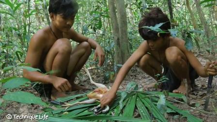 兄弟俩杀鸡取卵, 竟发现野鸡肚子里有蛇, 太渗人了
