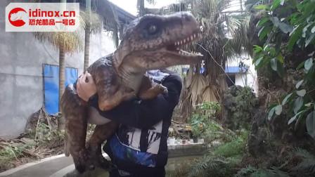 侏罗纪霸王龙道具-幼年恐龙玩偶