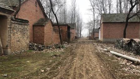 实拍皖北阜阳太和县农村, 因为村里道路太泥泞, 村民们都搬走了
