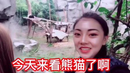 女孩去看国宝大熊猫, 第一只熊猫的造型太萌了, 女孩忍不住这么说