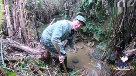 农村不起眼的小溪, 这种东西能卖上百元一斤! 大哥高兴坏了!