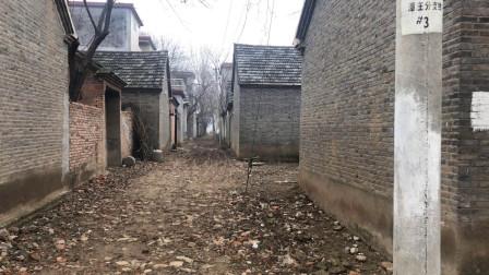 实拍安徽阜阳太和县农村, 村民们都搬到了马路边盖房, 小巷子空了