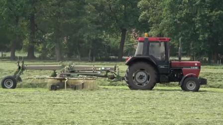 国外小伙自己制作的杂草整理机, 简单方便实用, 工作效率很快
