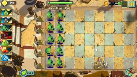 植物大战僵尸2国际版一阶植物神秘埃及01: 新植物暗影豌豆登场