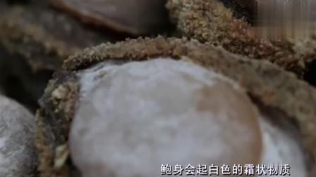 豉汁蒸鳗鱼, 鲍鱼可不是随随便便就能弄好吃的, 需要时间去沉淀