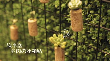 用红酒瓶塞打造厨房的空中花园? 重点是没花一分钱!