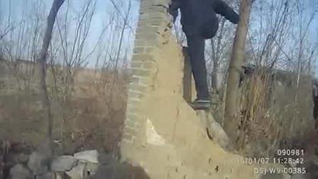 """河北唐山 """"疯牛""""发狂撞伤3人 民警果断开枪将其击毙"""