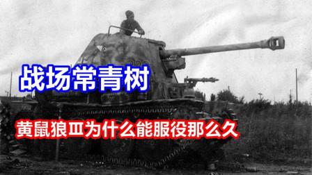 坦克世界西成解说: 战场常青树, 为啥这车能一直服役到战争后期?