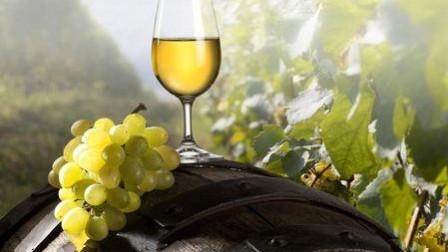 年份不同的酒不仅颜色有差别, 连配菜都有不同的讲究, 涨姿势了!