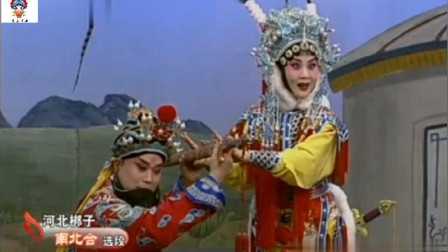 戏曲名家王洪玲, 张树群演唱河北梆子《南北合》经典唱段: 探母