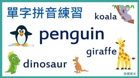 KK发音: 动物英文名称教学
