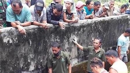 印度尼西亚 惨不忍睹! 44岁女科学家喂鳄鱼时被吃掉 尸体只剩一半
