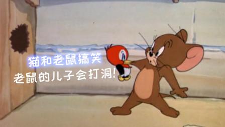 猫和老鼠四川话创意配音, 老鼠的儿子会打洞, 笑了还想笑!