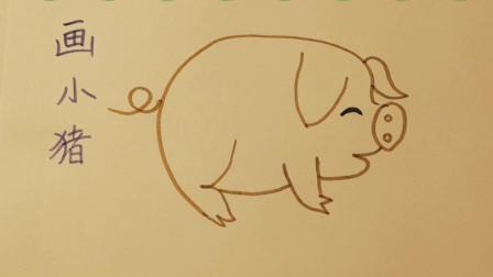 简笔画教学-画小猪,教儿童学画画初学,幼儿学画画入门技巧【乐成宝贝】