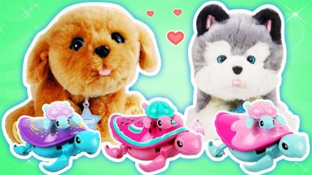 盘它!我的梦想小狗萌宠玩具