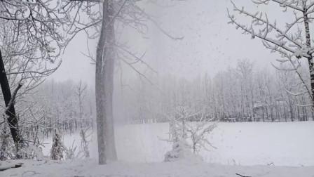 农村大雪过后,成了童话故事中的美景