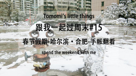 【Tomomi】VLOG-跟我一起过周末#15-春节哈尔滨·合肥 |手帐翻看~