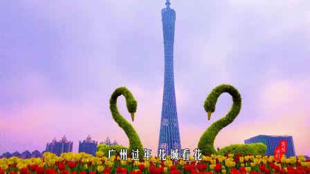 影像记录•猪年春节-亚运公园25届园博会