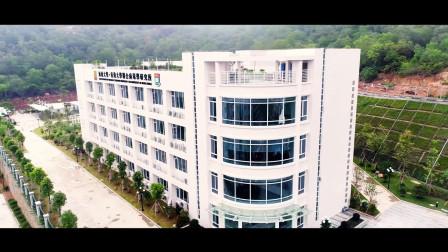 奇衡文化 | 汕头香港大学联合病毒研究所宣传片