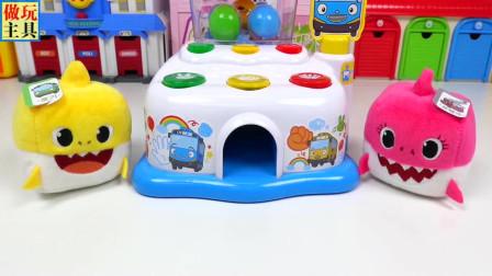 鲨鱼宝宝和玩具蛋,有趣的玩具
