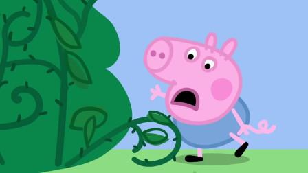 小猪佩奇:哇,猪爷爷真是太聪明了,带了竿子摘黑莓