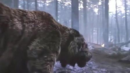 鬼子杀了东北虎虎仔和母老虎,遭到公虎疯狂报复,灭了整个联队!